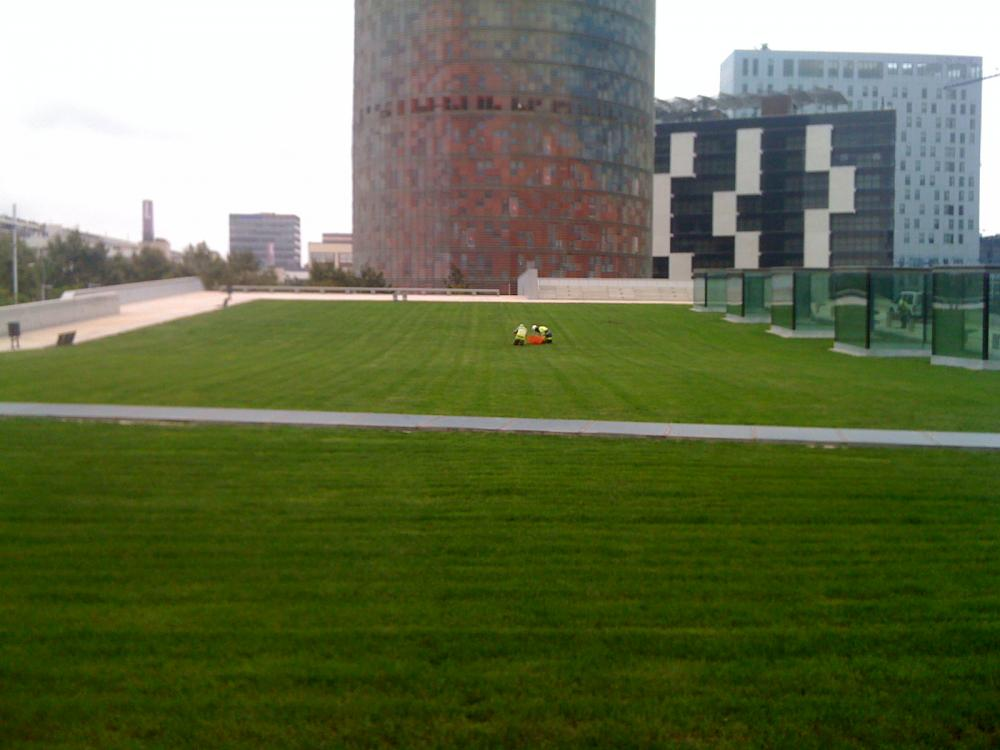 Jardineria Centre del Disseny