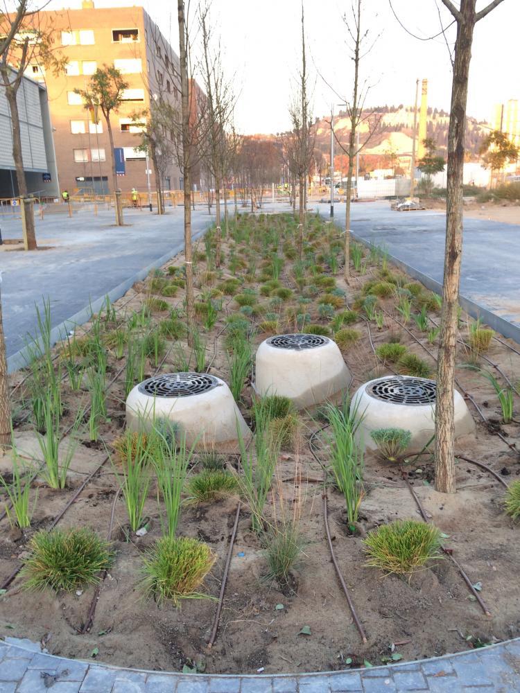 Plantacions Ulldecona